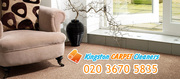 Carpet cleaning in Kingston
